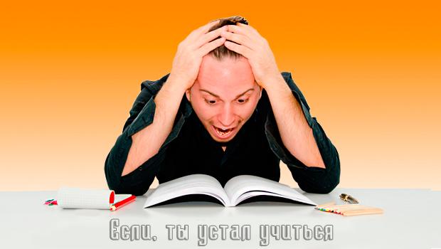 Заказать дипломную работу в Новосибирске